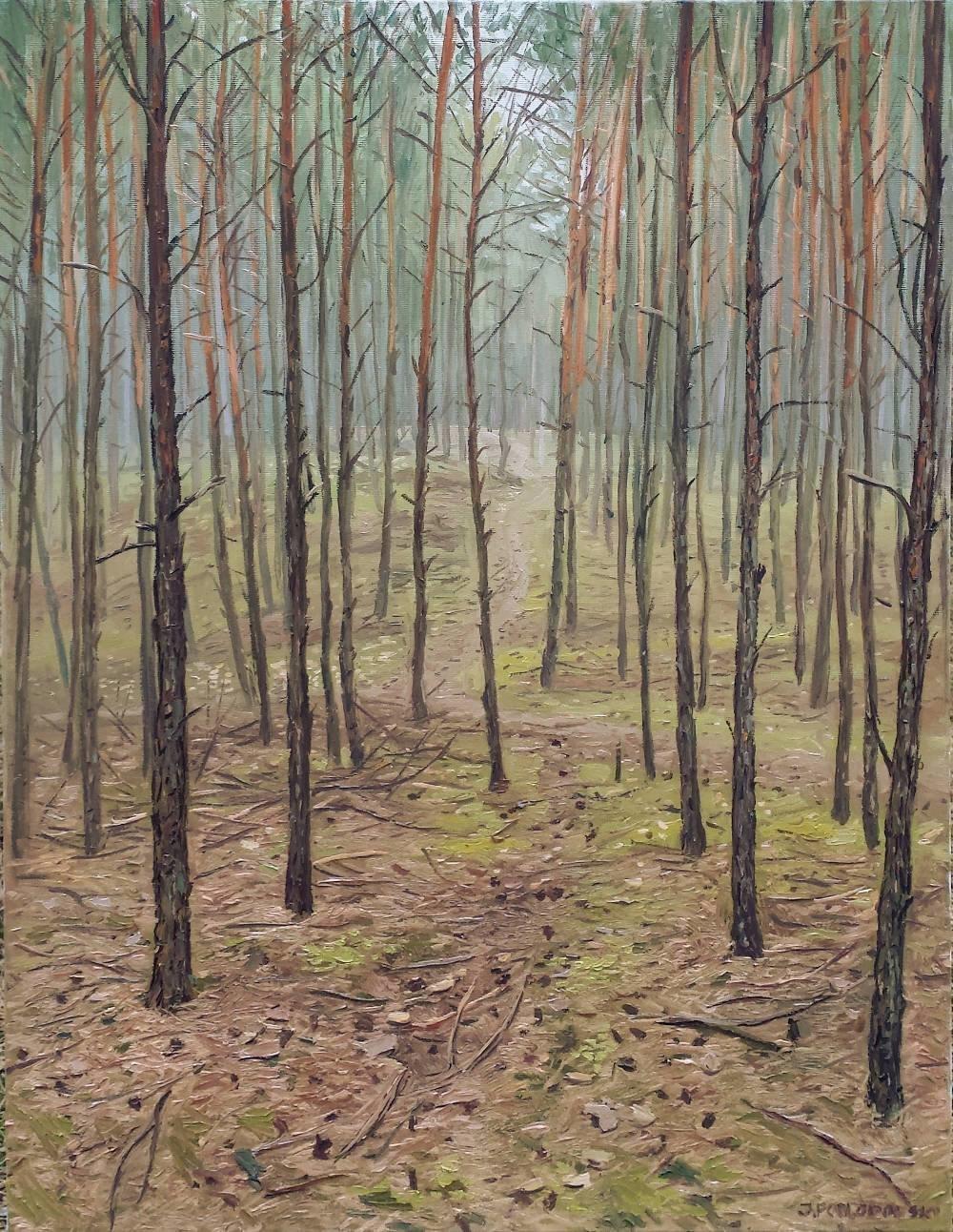 Las z Radomyśla nad Sanem 80x60 olej płótno 2016 (wł. pryw.)