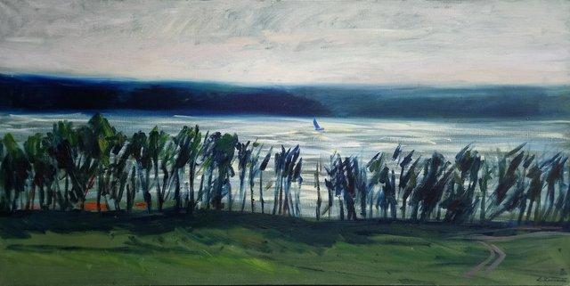 Jezioro Pluszne 70x140 olej płótno 2016