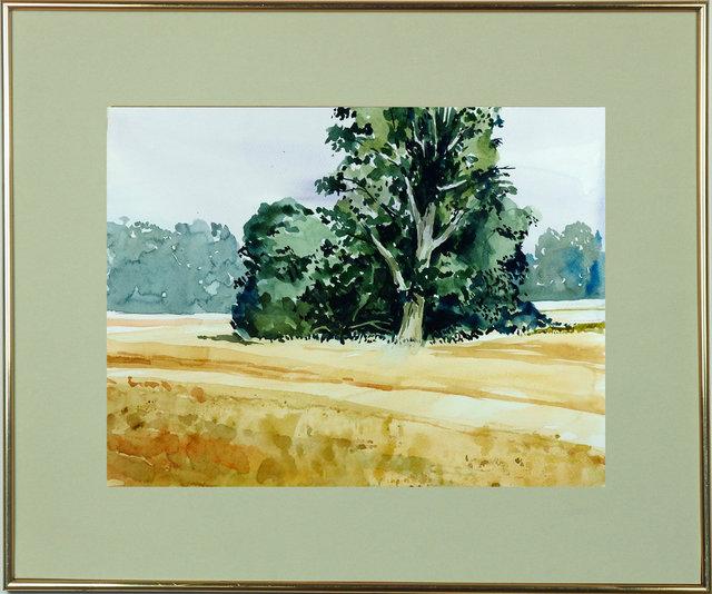 Pejzaż polski 32x42 - 01 Drzewa na polu po żniwach.jpg