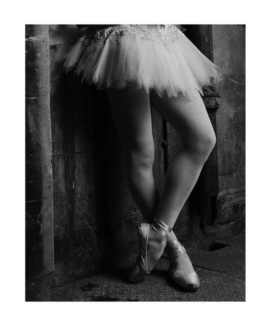 IRIS BALLERINA .jpg