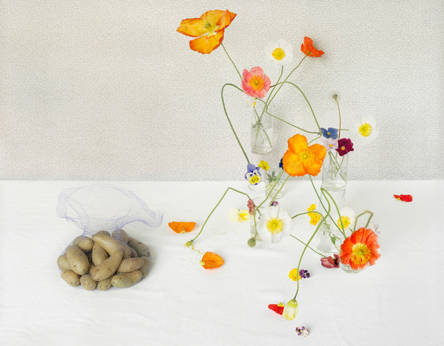 Potatoes and Poppies, c 2010