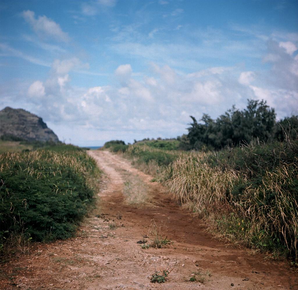 trail2.jpg