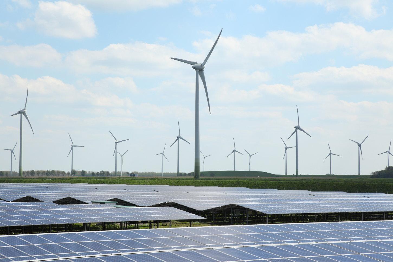 duurzaamheid en circulaire economie