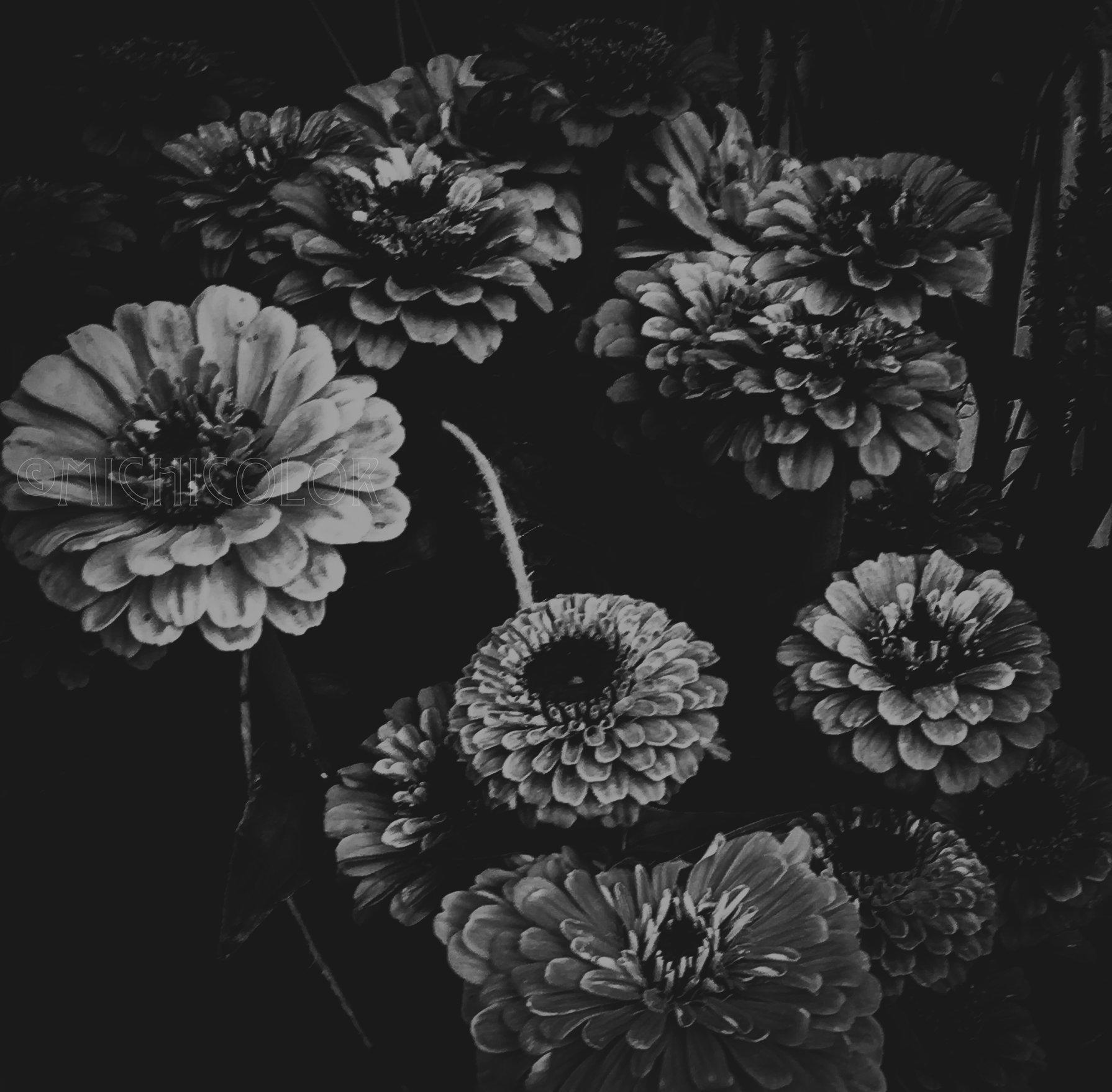 Flower.10.jpg