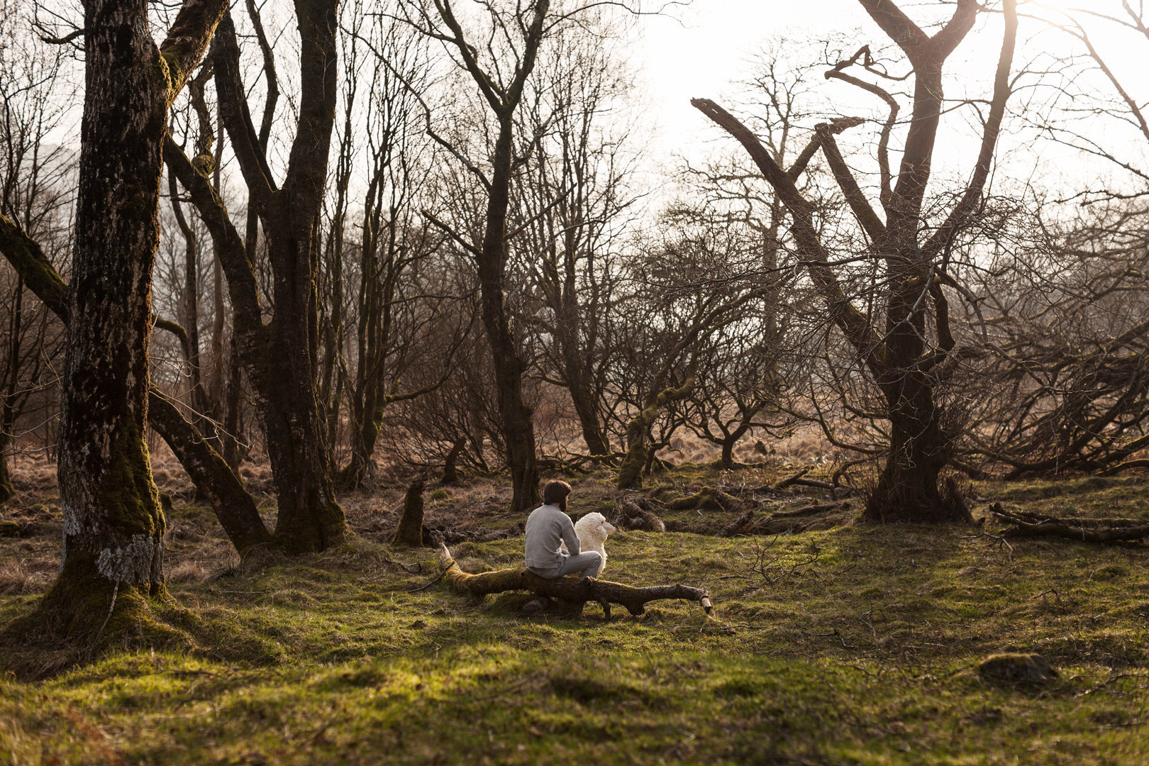Beyond The Pines | Series of 8 images | 2014