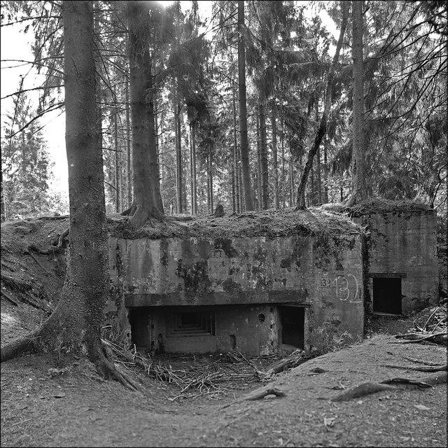 Bunker 132 Huertgenwald