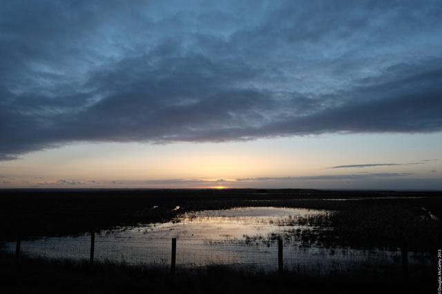 Sunset over Harty Marshes