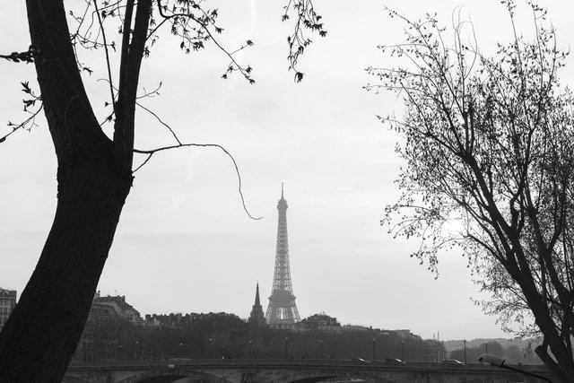 Pont Alexandre III day-023.jpg