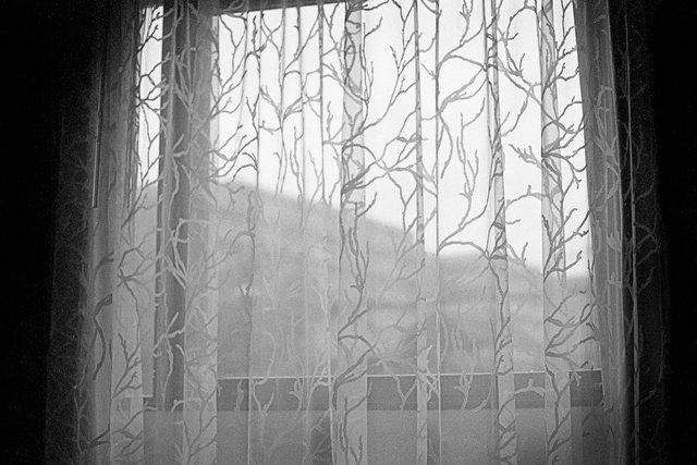 curtains022.jpg