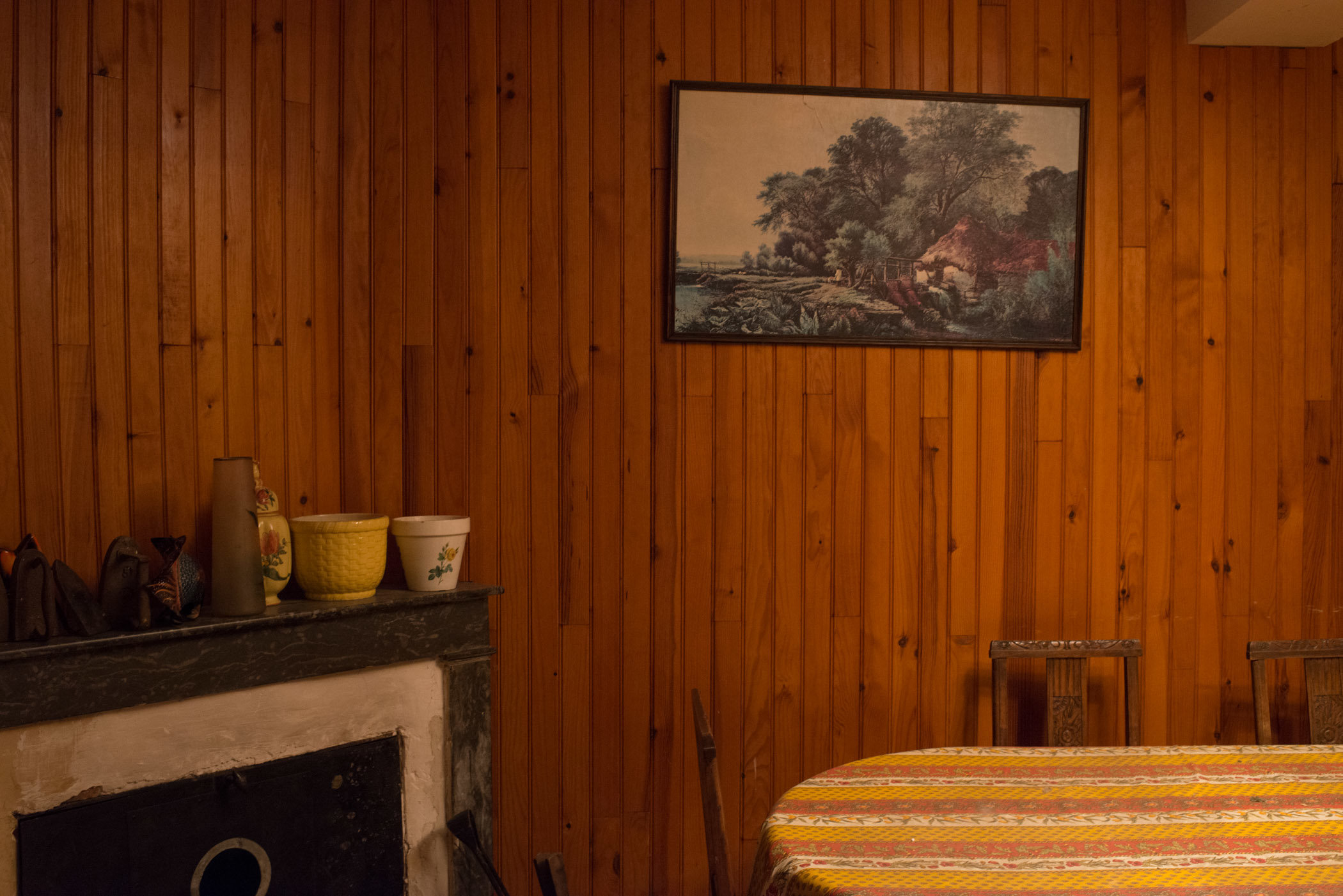interior-woodpanel.jpg