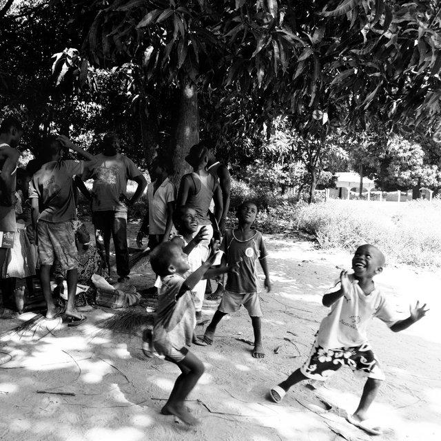 Gambia 2019 (34 van 75).jpg