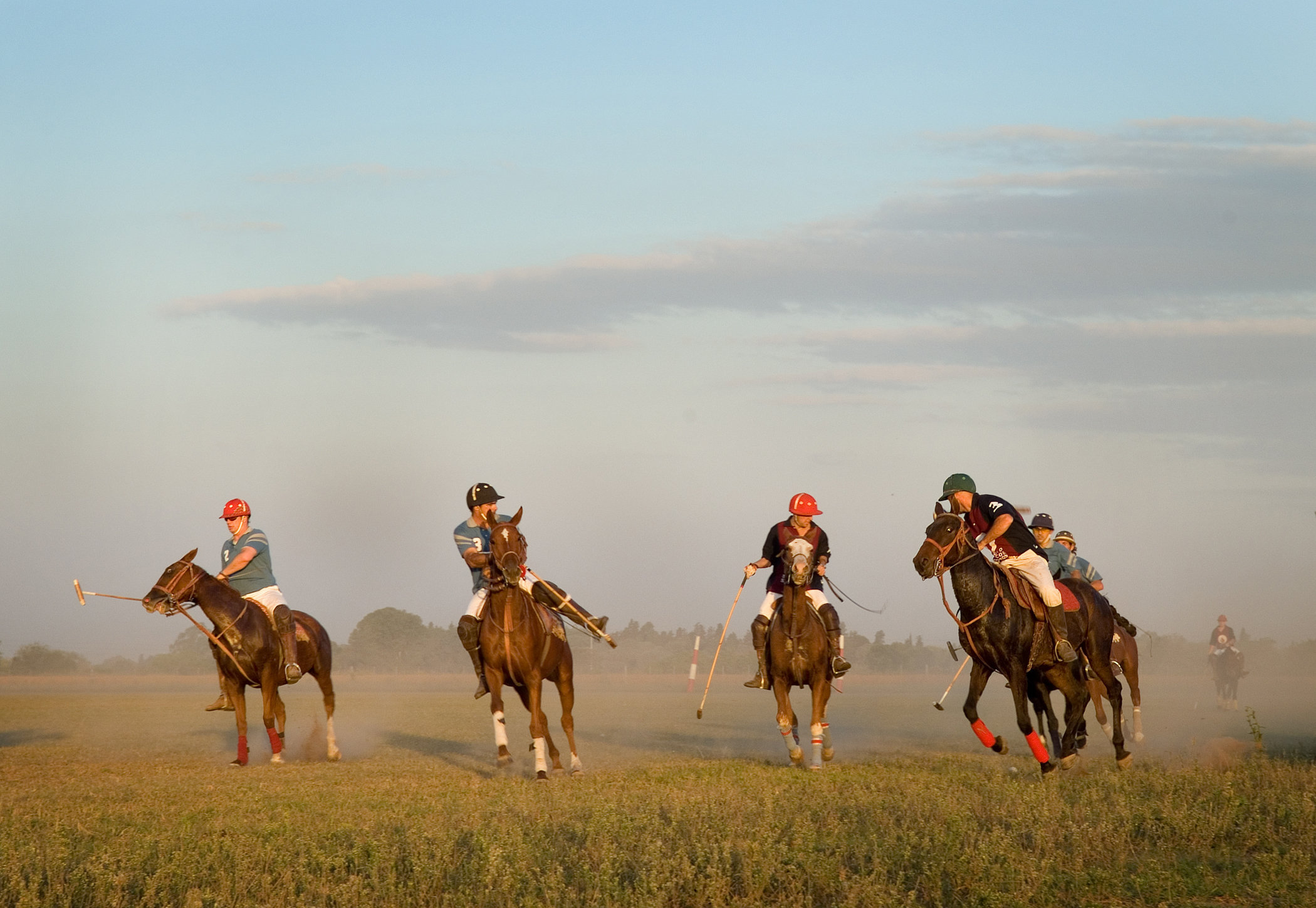 Polo in Argentina I