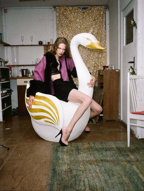 Merla on a swan.jpg
