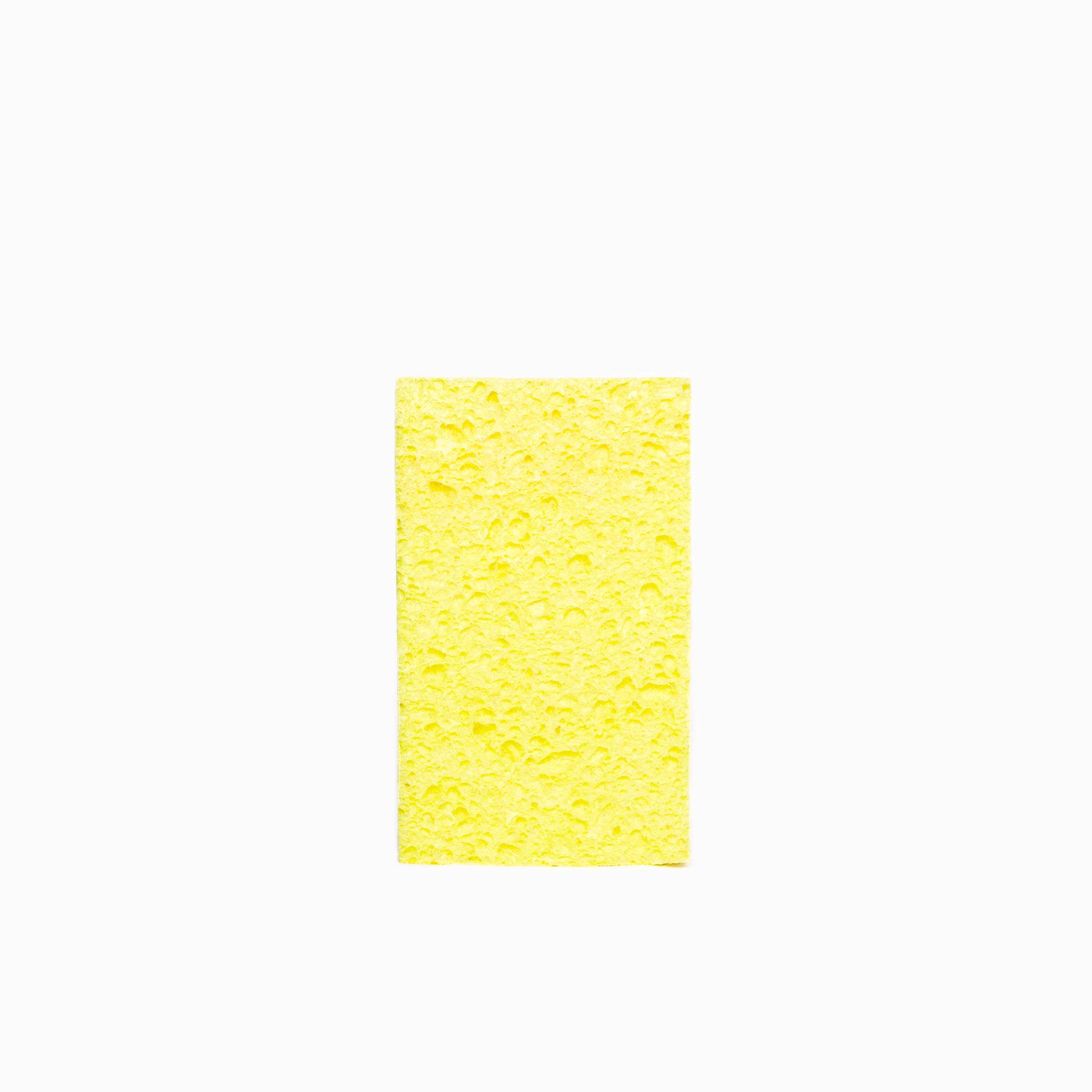 2016-4-Sponge.jpg