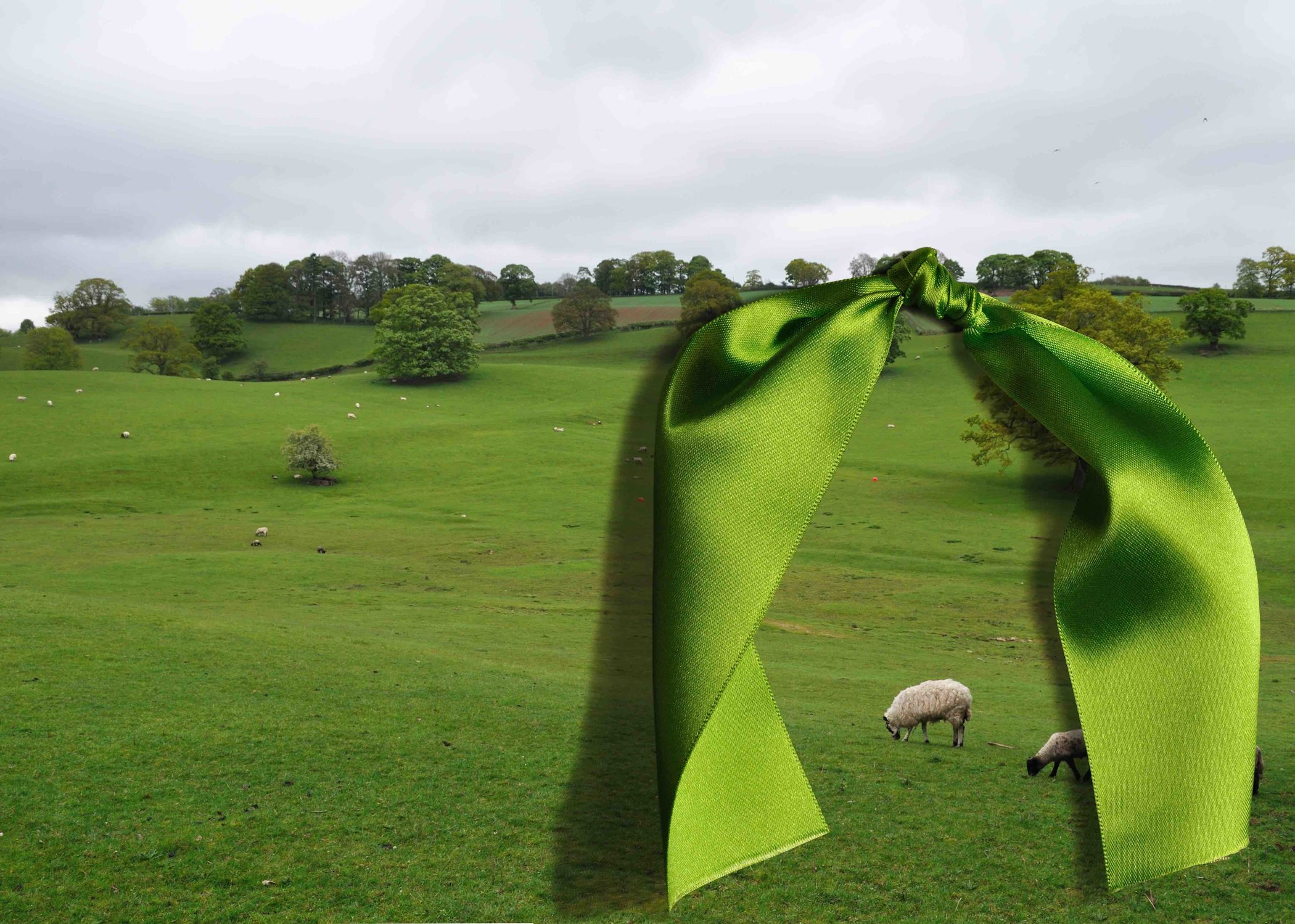 Sheep & Green Bow from the Landscape series by A A small.jpg