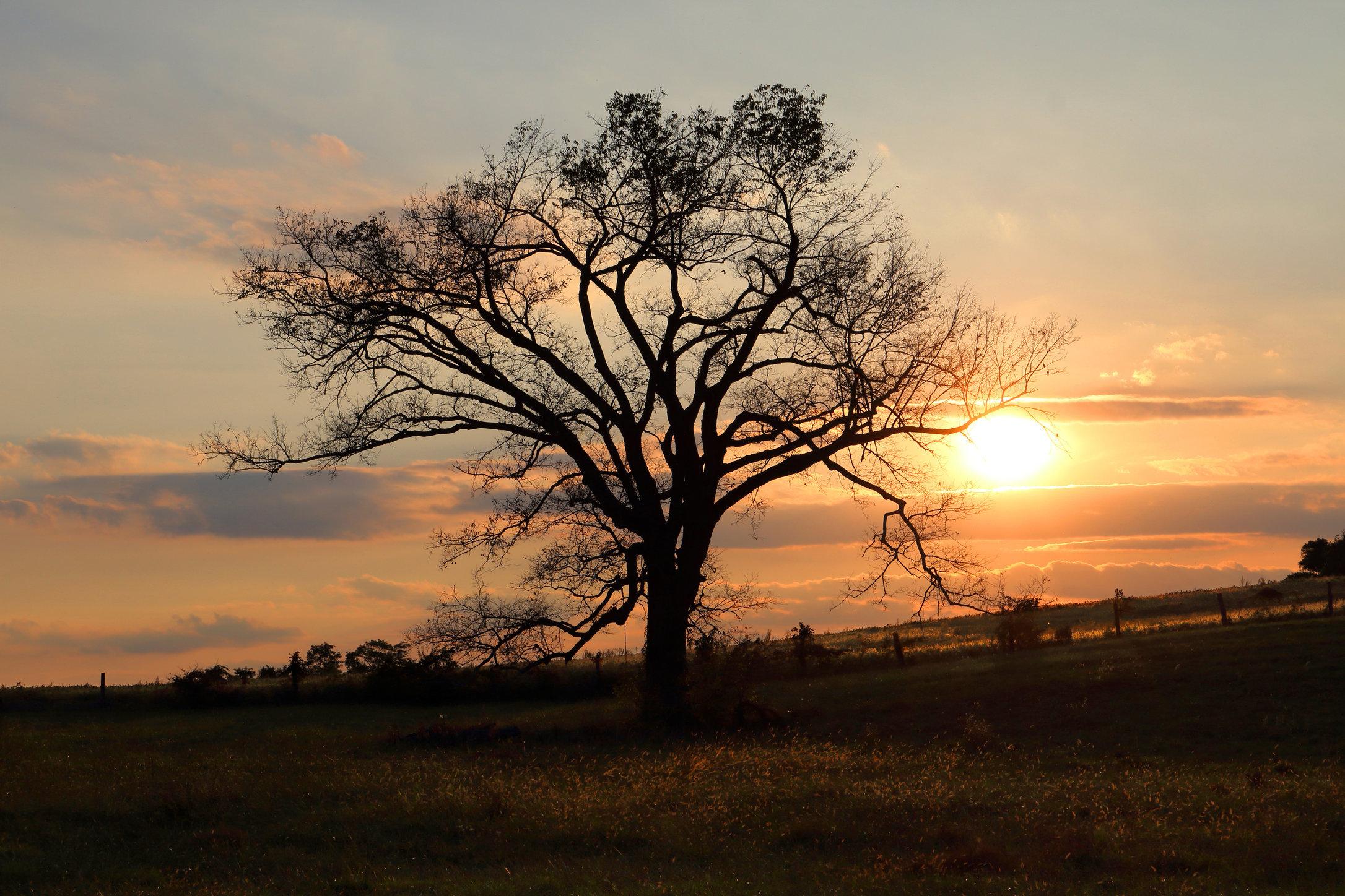 Sunset, southern Ohio