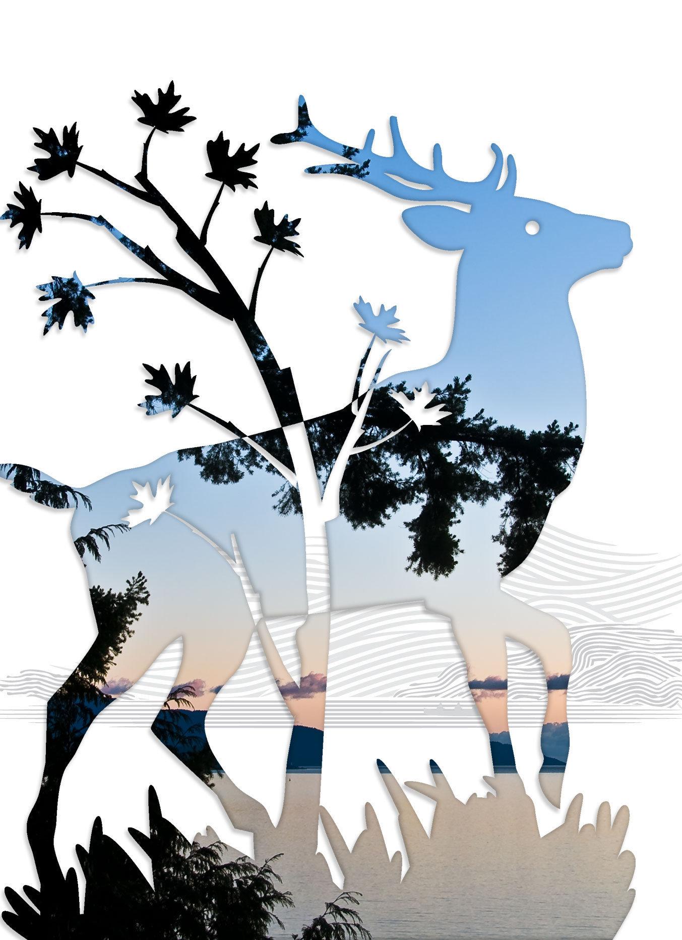 Elk-12.jpg