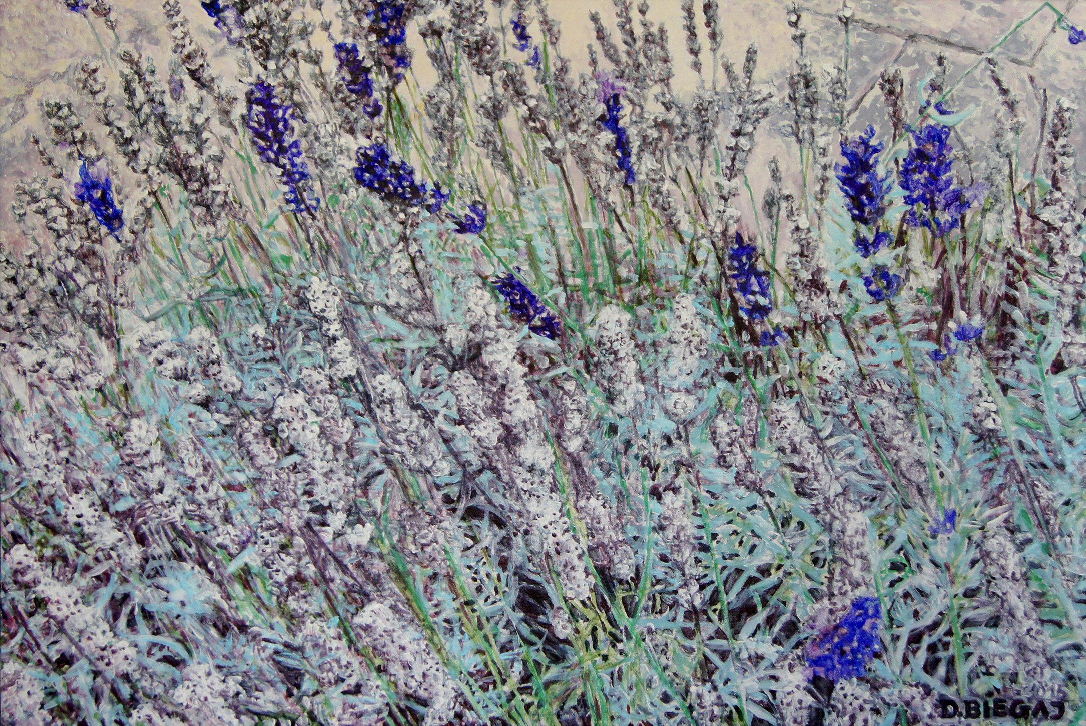 Lavender 51x76 akryl płótno 2015 (wł. pryw.)