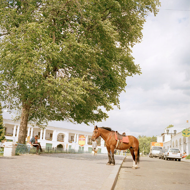 5_Rozovsky_Horse.jpg