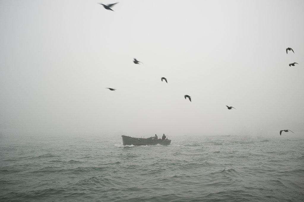 Neverland-7.jpg