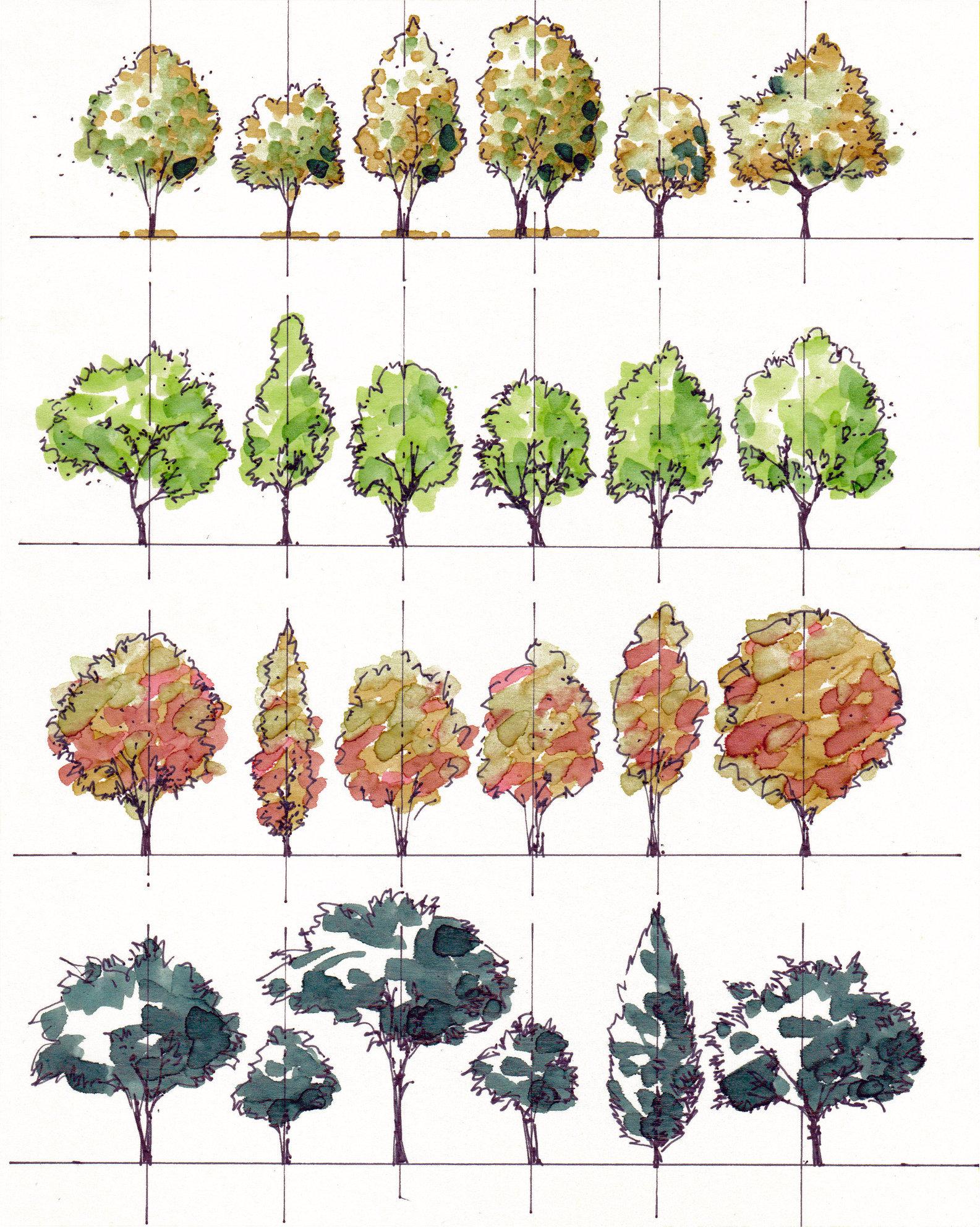 MFLART Graphics: Sketch Library
