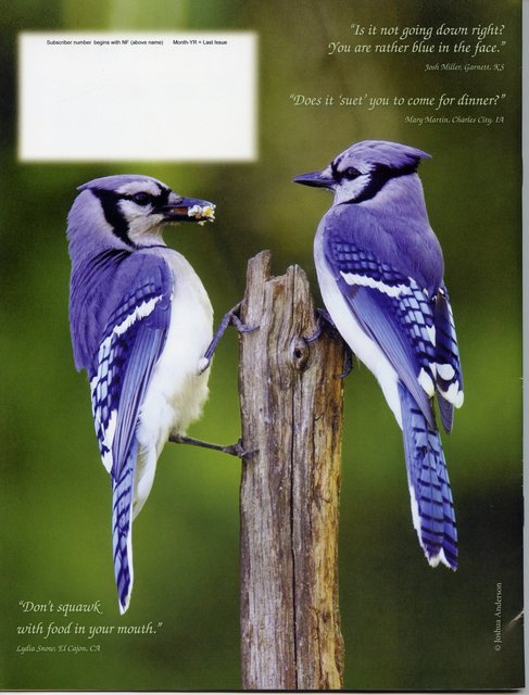 Nature Friend Magazine (back cover); © March 2013