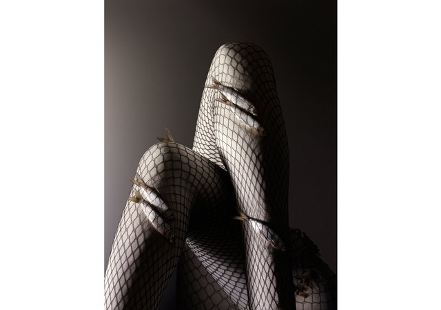 Fishnets_web.jpg