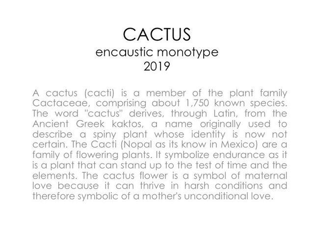 13. Cactus.jpg