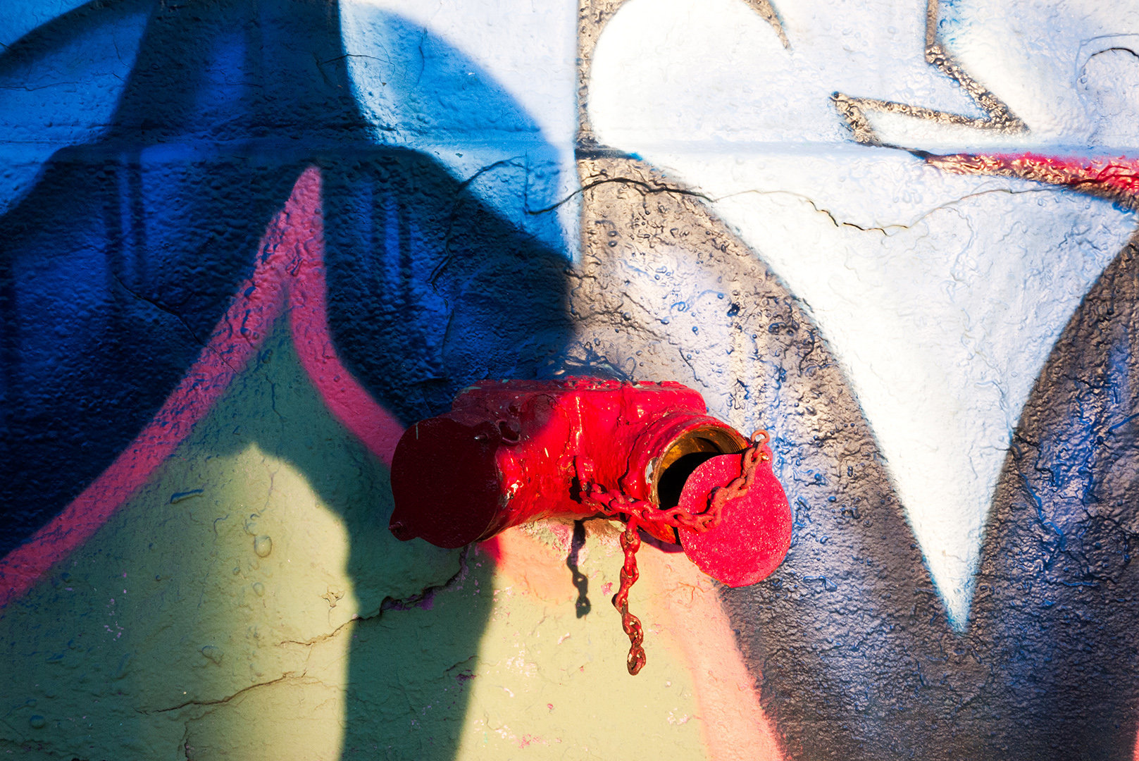 graffitisiamese0023.jpg