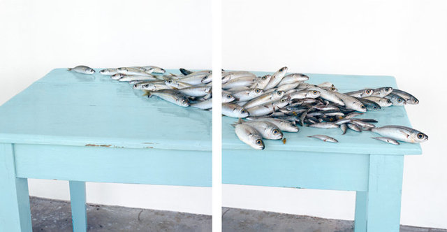 Fish on Blue, c 2013