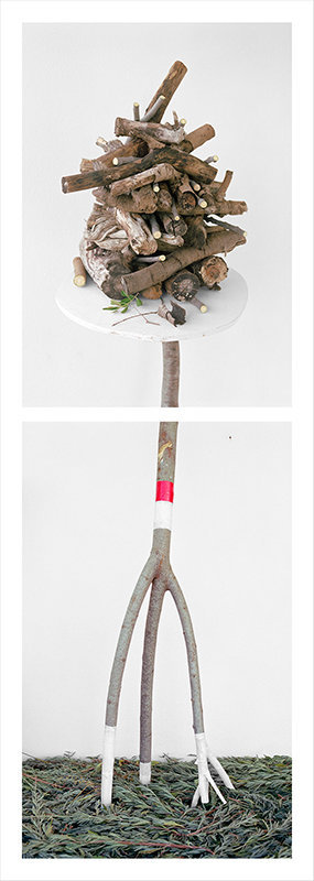 Stick Pile and Lavender Greens, 2017