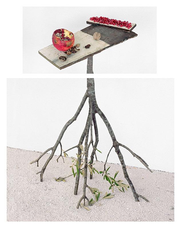 Pomegranates and Walnuts, 2017