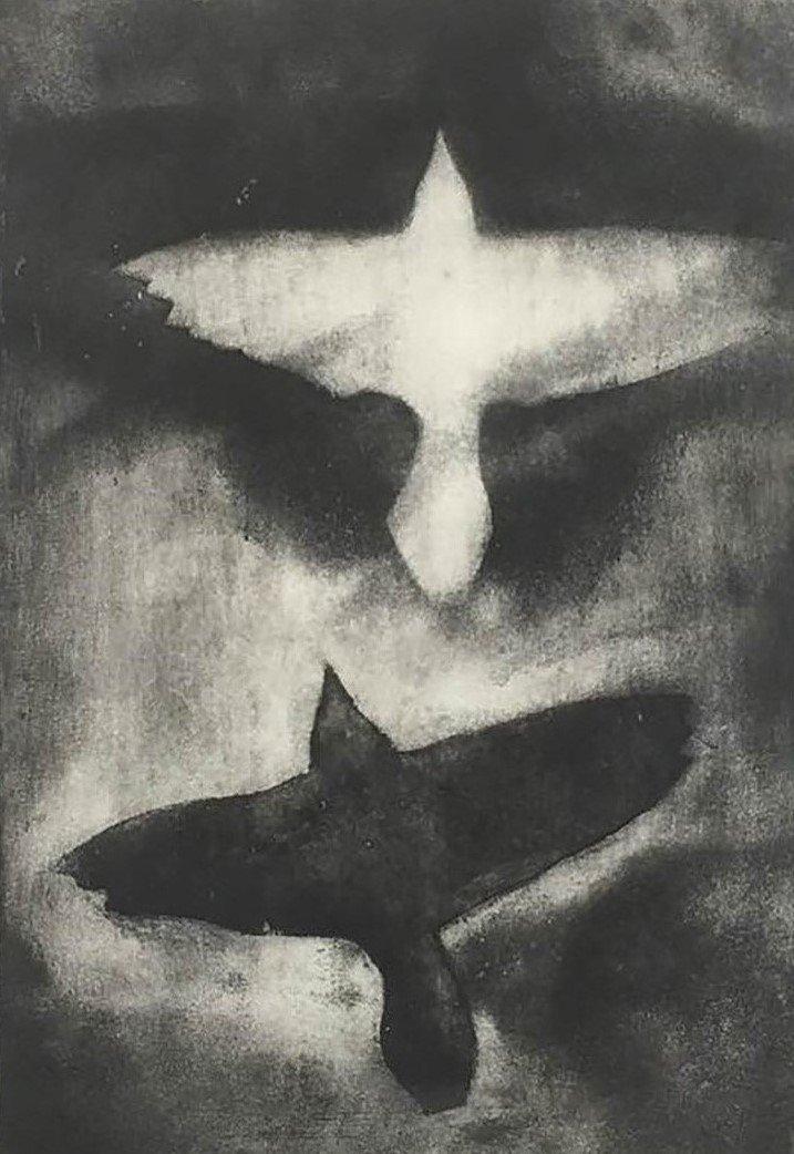Robert Hinchley - Birds 6