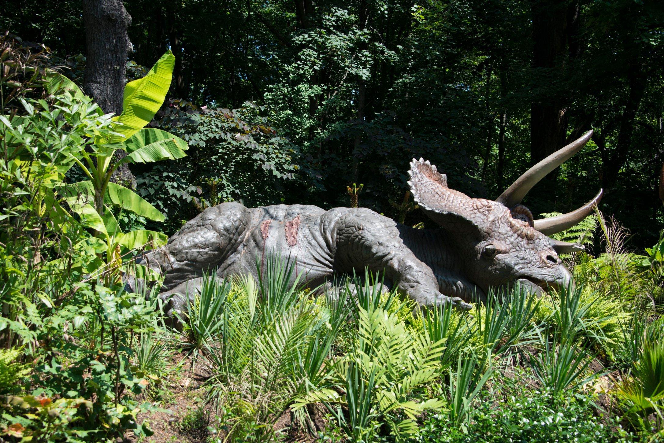 Dino 23.jpg