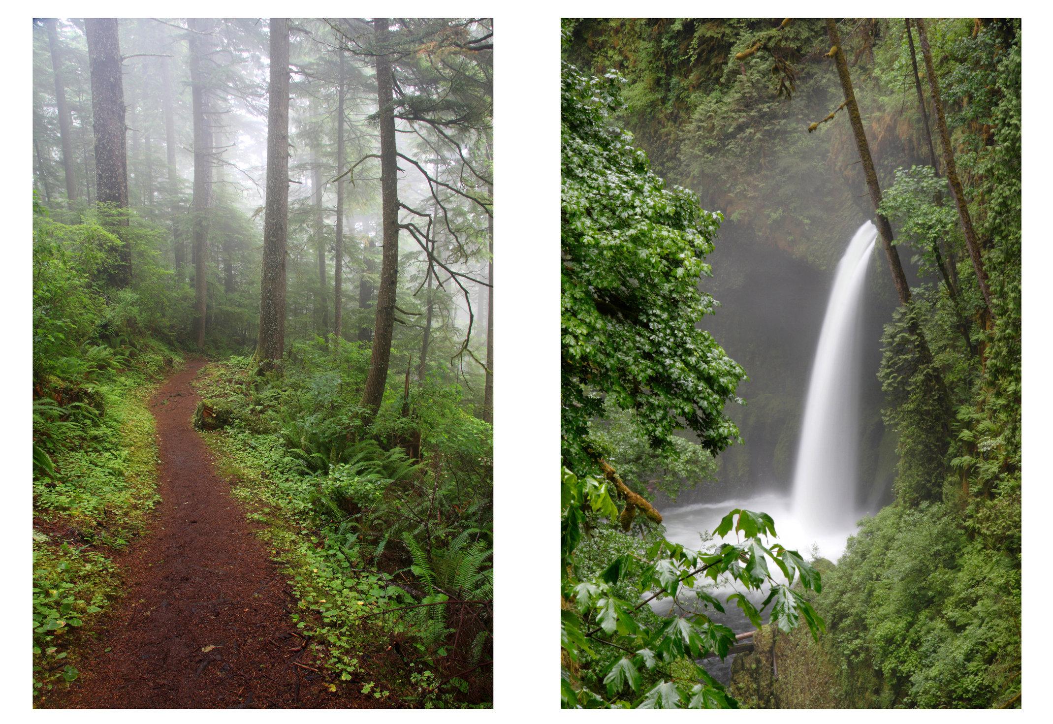(left) Hiking Trail, Coastal Range, Oregon; (right) Metlako Falls, Columbia River Gorge, Oregon