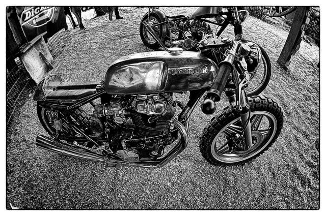 DSC00460_Snapseed.jpg