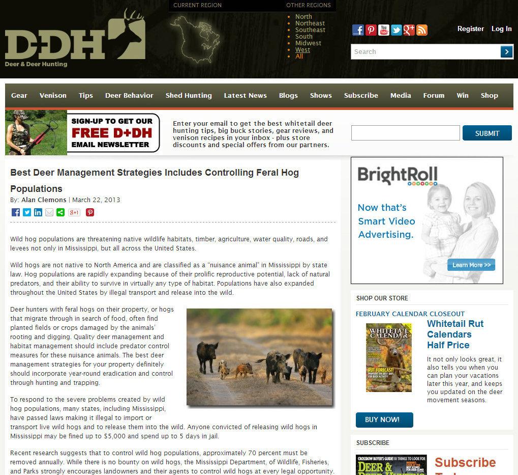 Deer & Deer Hunting Magazine; March 2013