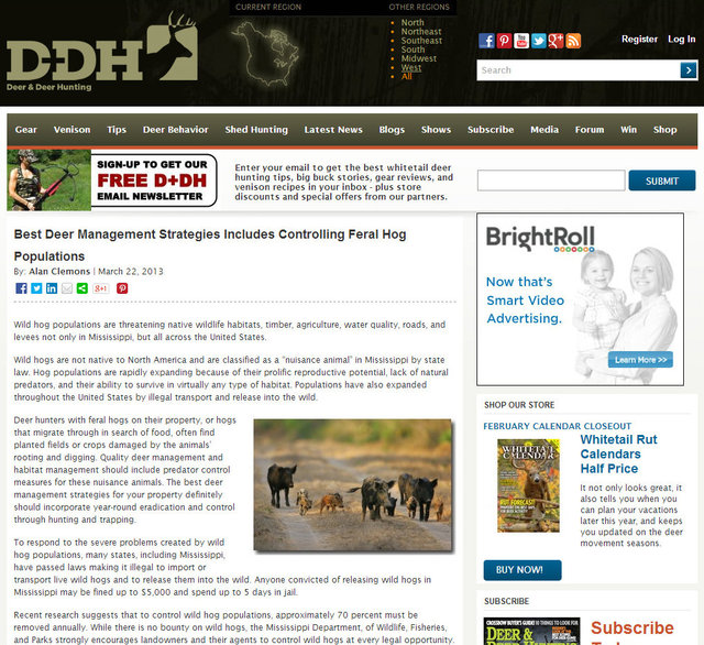 Deer & Deer Hunting Magazine; March 2013