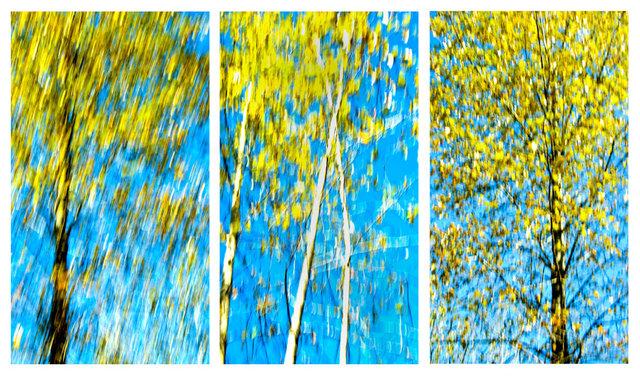 Steven's Pass Triptych.JPG