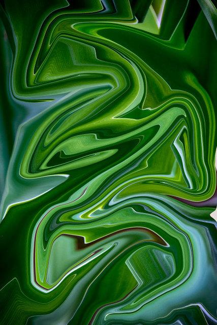 Swirled54IMG_2727HDR.JPG