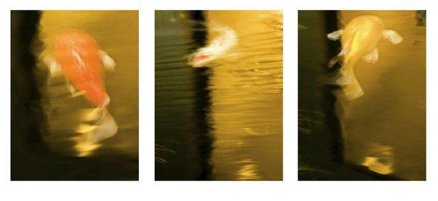 0007_Triptych32.JPG