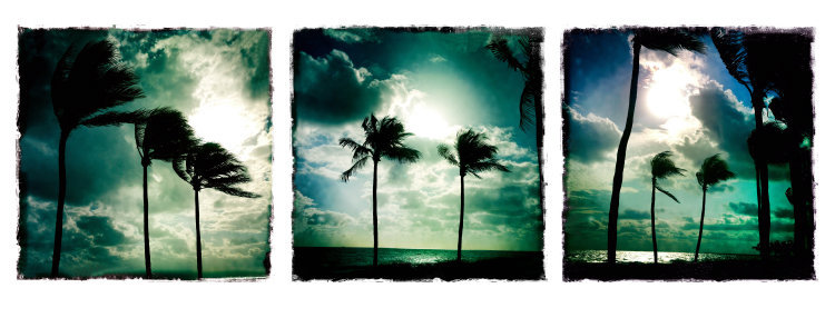 0047_Triptych44.JPG
