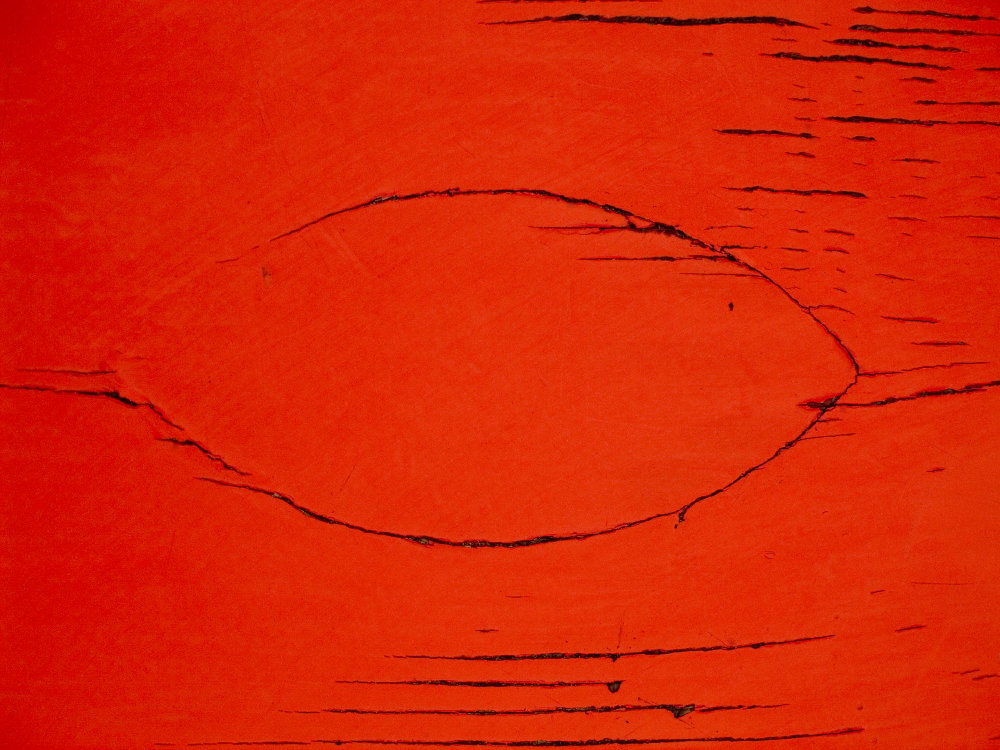 0111_RED CRW_7614.JPG