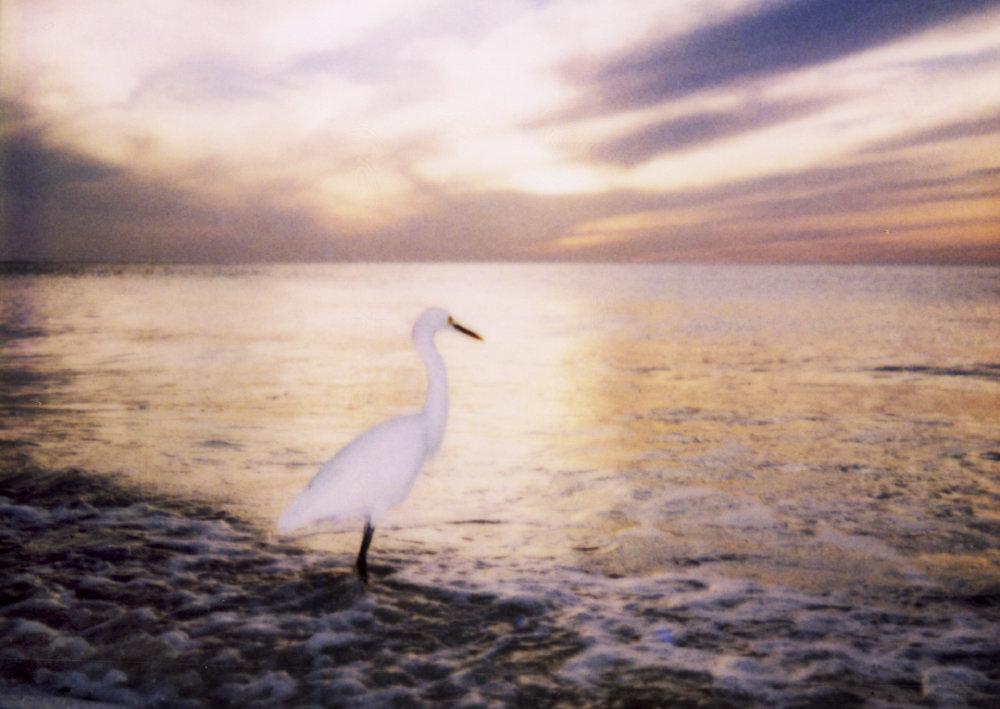 0006_Naples Sunset.JPG