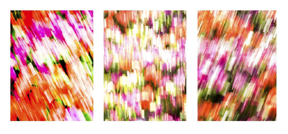 0009_Triptych34.JPG