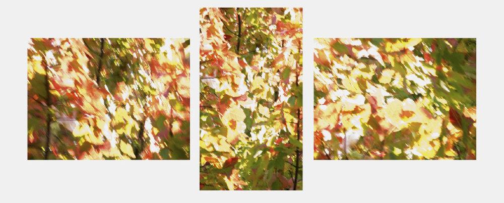 0014_Triptych39.JPG