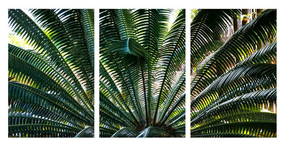 0240_Triptych 110.JPG