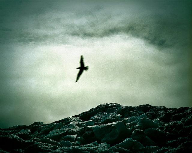 Danielle Celie Photography First Oil adventure 7 Evanesce 25x31,36 72dpi.jpg