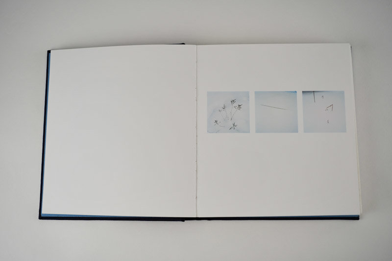 Mnemonics, 2009