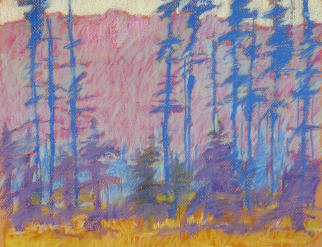 Sawtooth Lodge #3, 2013, Pastel on Paper, 12 x 14 in.